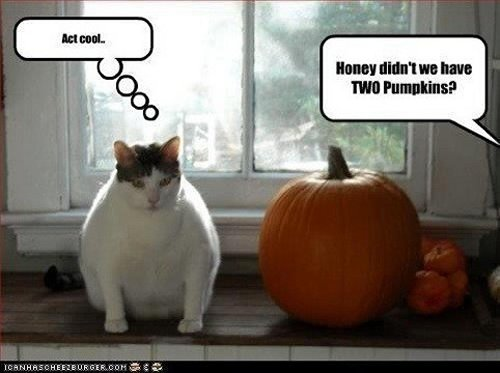 Ten (New) Funny Halloween Memes - MajorGeeks